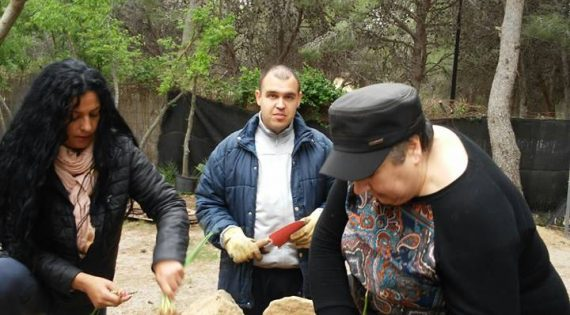 Plantación huerto ecológico